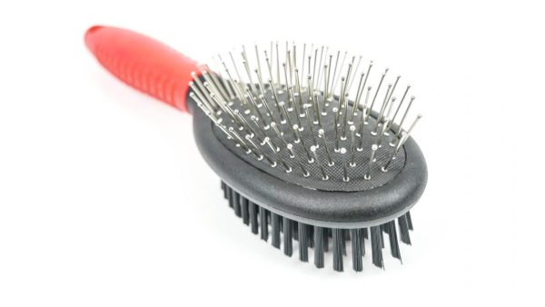 Pin Bristle Brush - Pet Product - Large - Shantys - 5